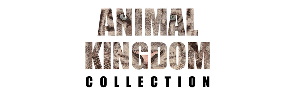 animal-kingdom-logo